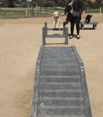 dog-agility-equipment-002